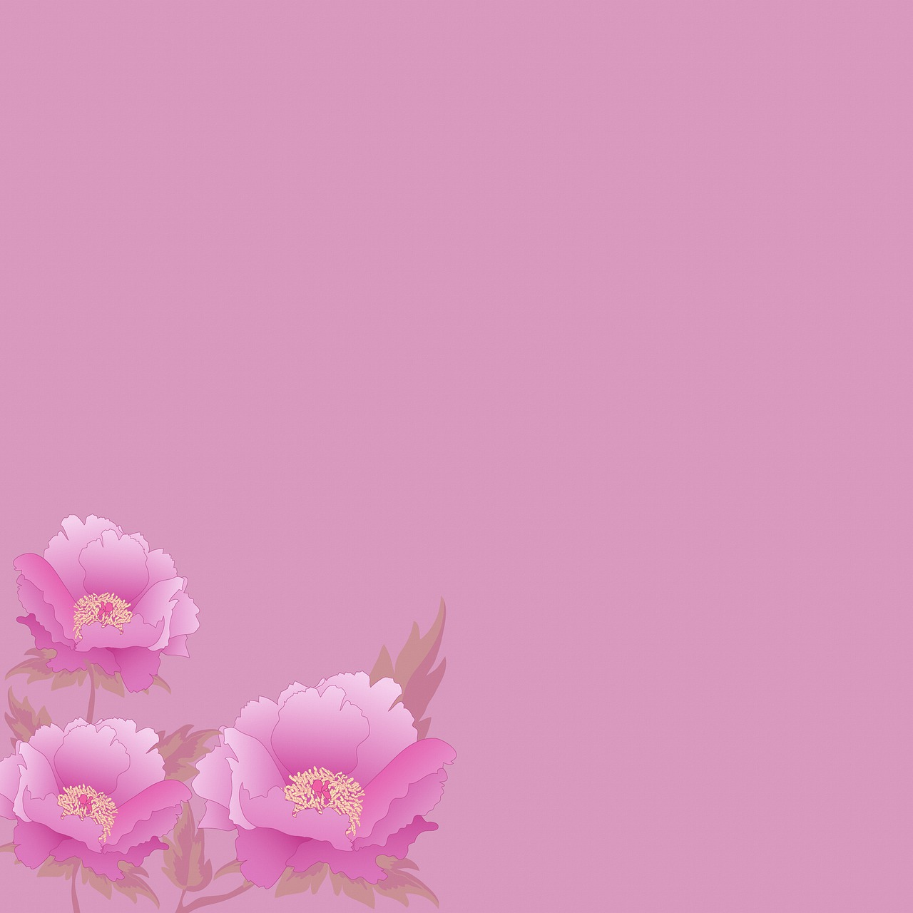Floral Background Pink Peonies Free Image On Pixabay