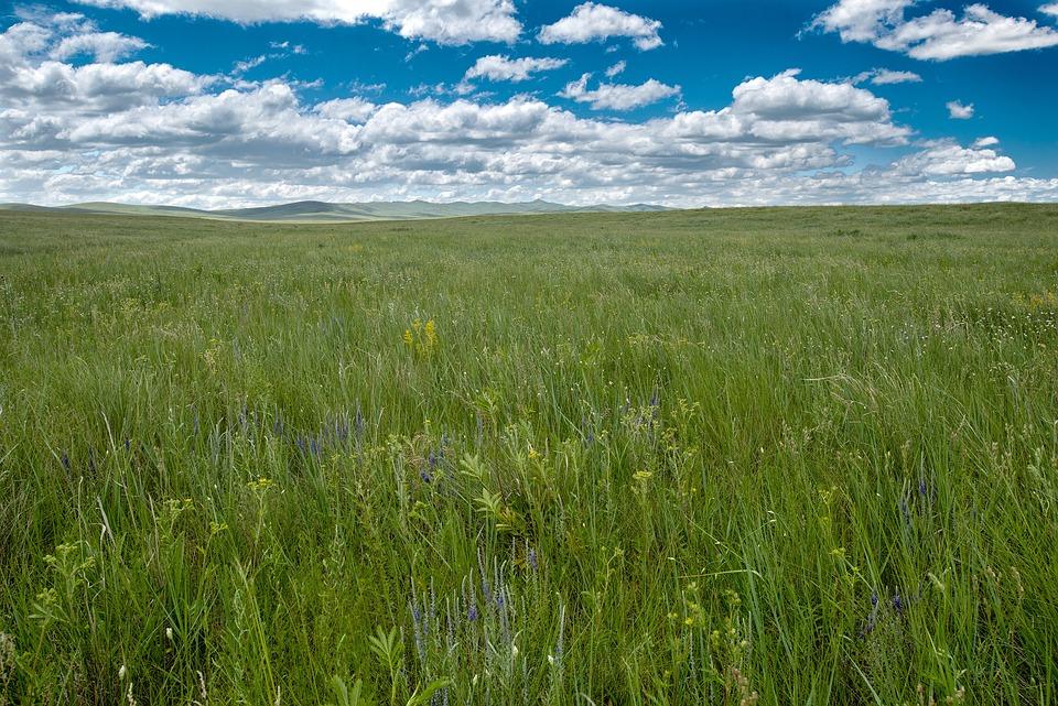 風景 大草原 ステップ - Pixabayの無料写真