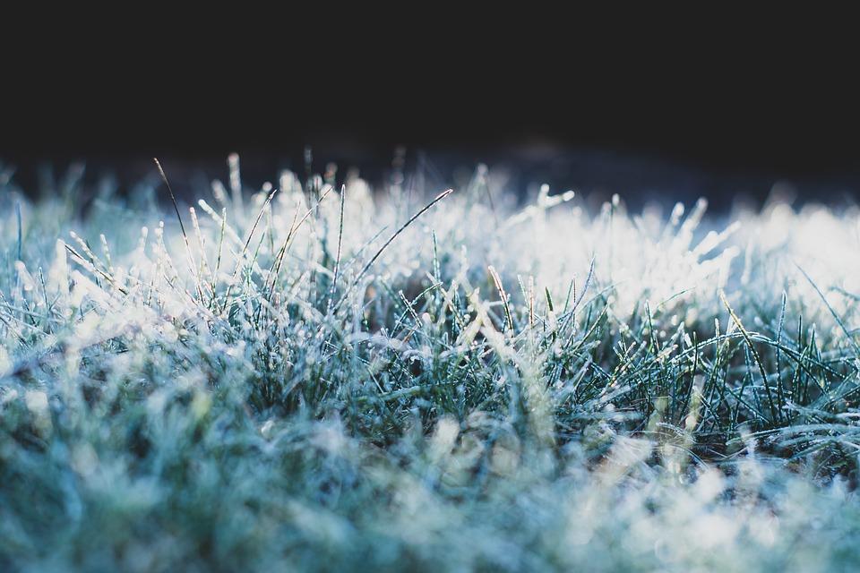 В Марий Эл ожидаются ночные заморозки