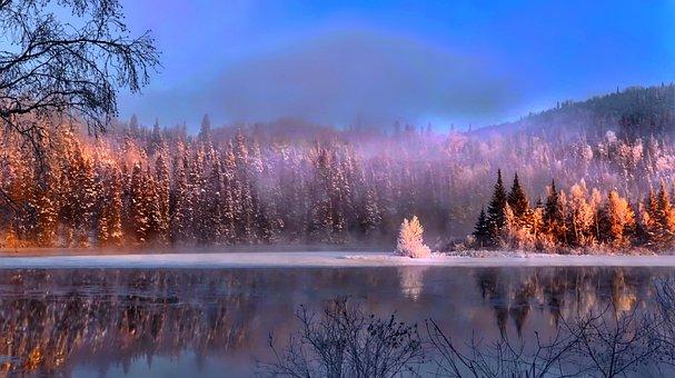 Landschaft, Natur, Farben, Bunte, Bäume