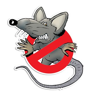 Rat, Pest Control, Mouse, Ban, Rodent