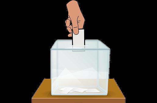 Droit De Vote, Bulletin De Vote, Vote