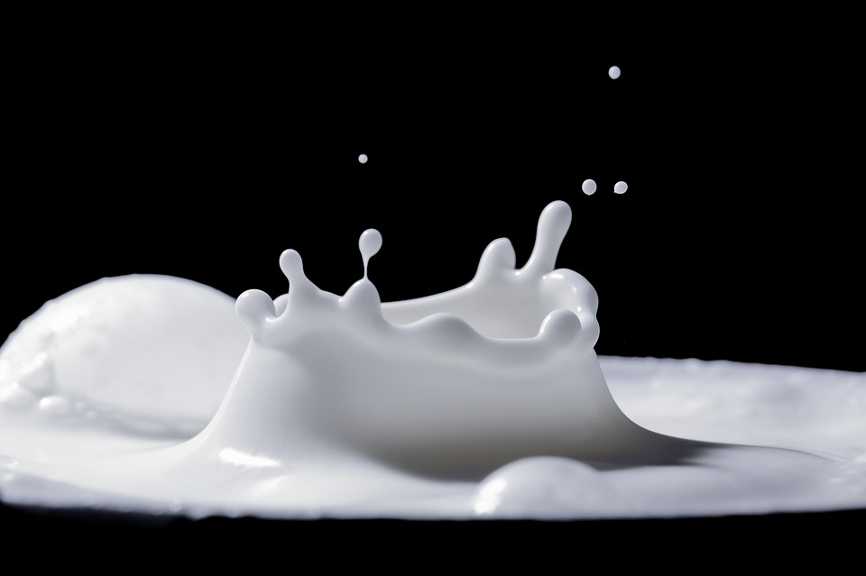 Milk, Spray, Drip, Splash, Food, Liquid, Fresh