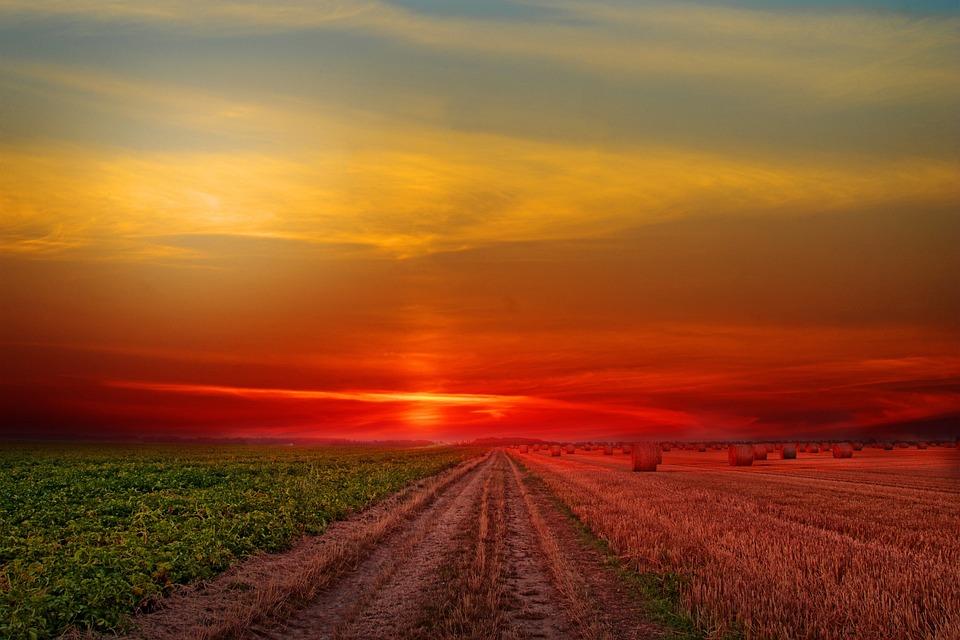 Landscape, Field, Sunset, Sky, Colorful, Nature, Clouds