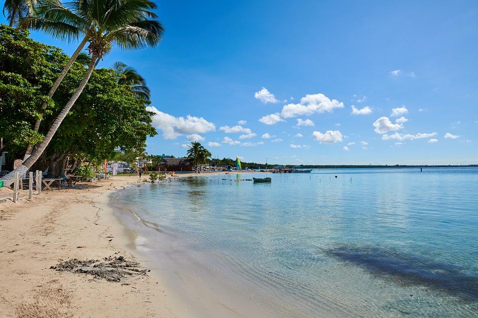 Tropicales República Dominicana - Foto gratis en Pixabay