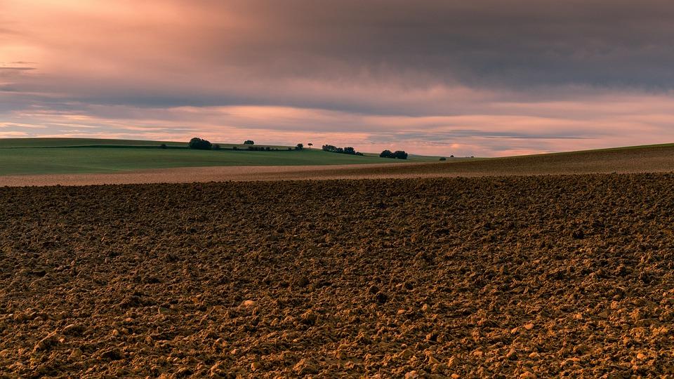 Horizonte, Agricultura, Campo, Cielo, Paisaje, Rural