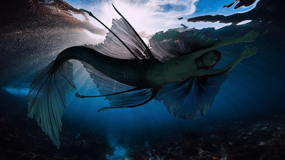 """Résultat de recherche d'images pour """"nude underwater"""""""