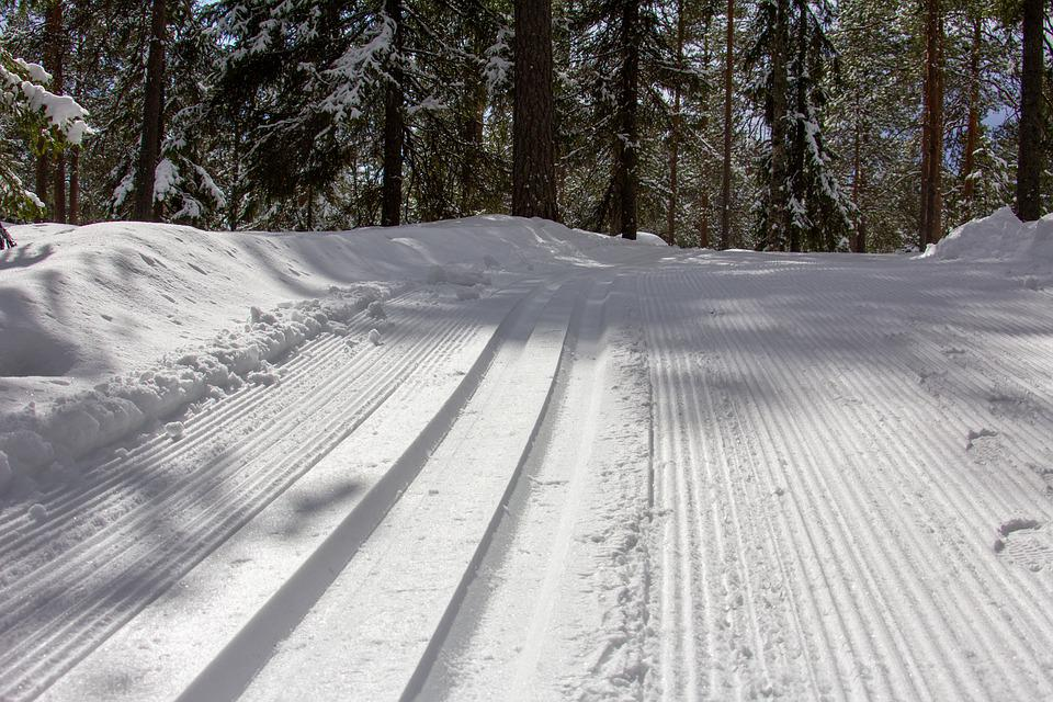 Ski Tracks, Snow, Ski, Skiing, Winter, Cold, Nature