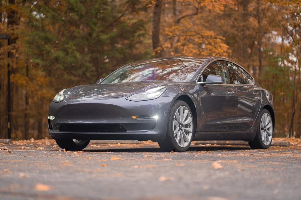 車, 秋, 車両, テスラ, モデル3, ライト, 茶色の車