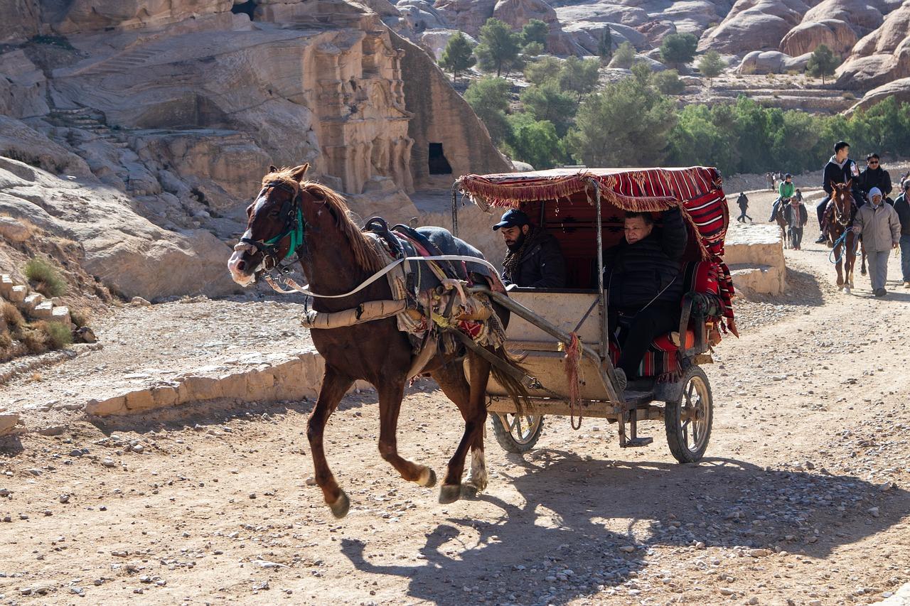 Old horse transport