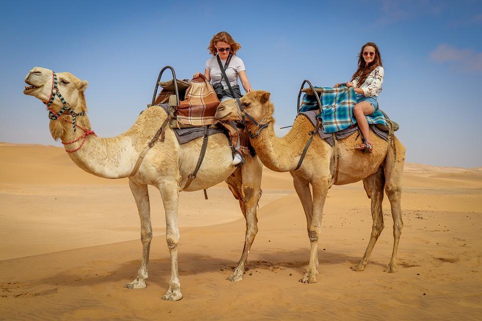 Camel riding in Jordan