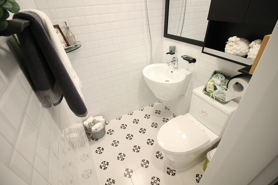 Une toilette.   Photo : Pixabay