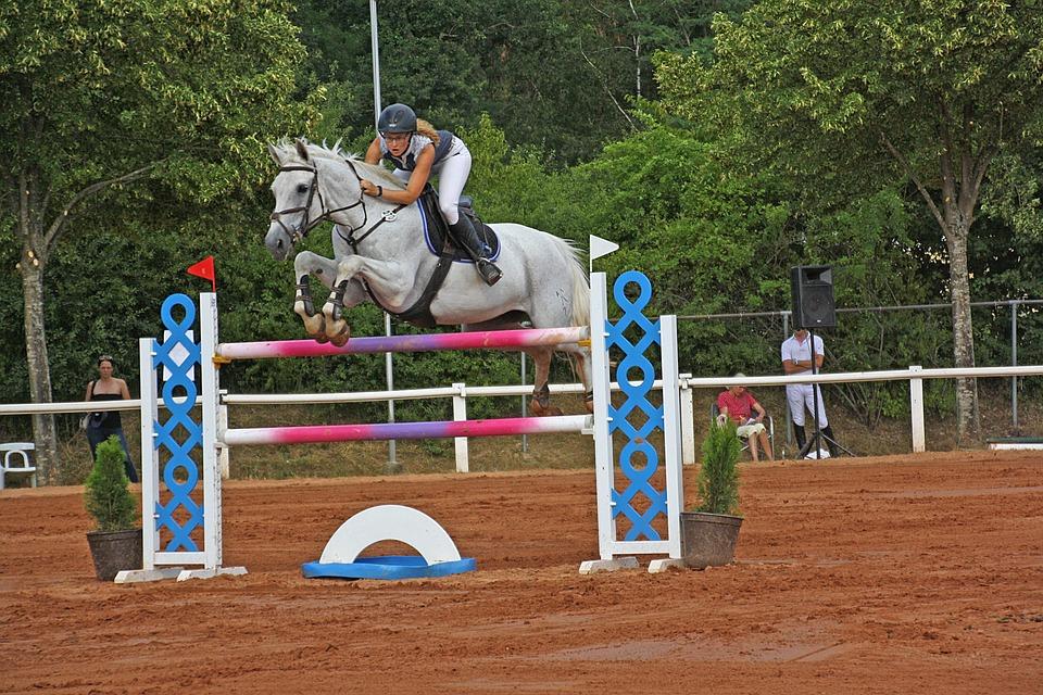 Horses, Human, Ride, Equestrian, Show Jumping