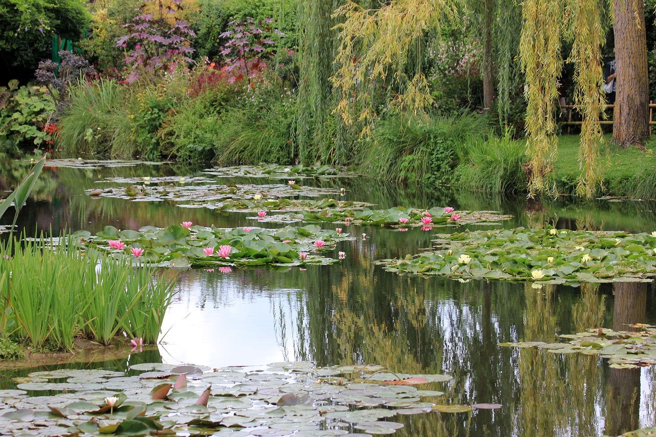 Картинки вид сада с озером