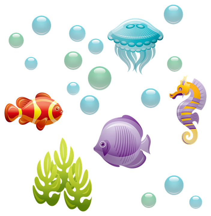 Underwater, Fish, Seahorse, Bubbles, Jellyfish, Sea