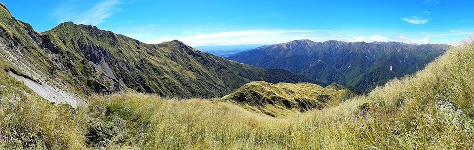 山, ピーク, 雲, 空, 草, 頑丈な, 美しい, 見事な, 風景, 自然, ニュージーランド, ブッシュ