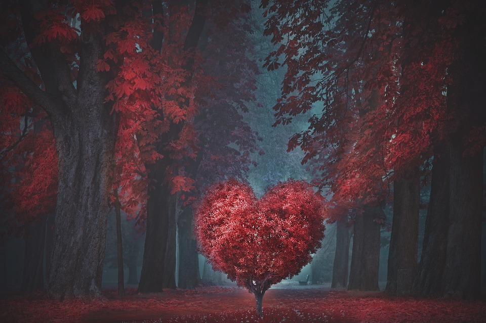 Valentine, Heart, Forest, Romantic, Love, Red, Vintage
