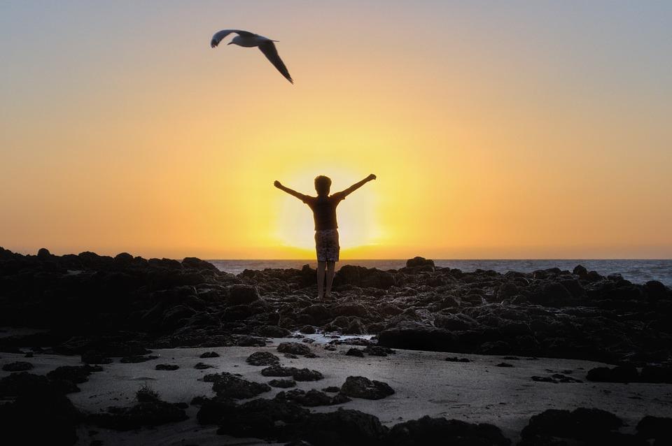 日没, 喜ぶ, ゴールデン, 風景, 海, 夜, 水, 夢, 夕暮れ, 空, 気分