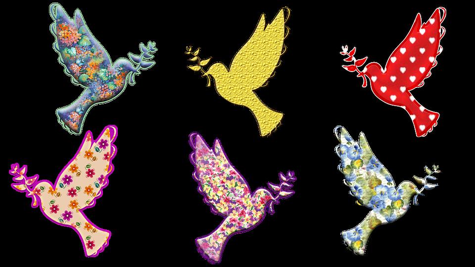 5200 Gambar Kolase Biji Burung Hantu Gratis - Kumpulan ...