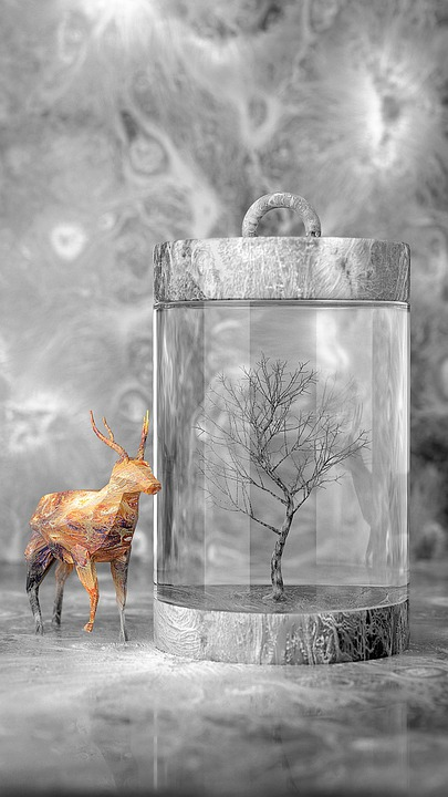 Boyama Hayal Gucu Uc Boyutlu Pixabay De Ucretsiz Resim