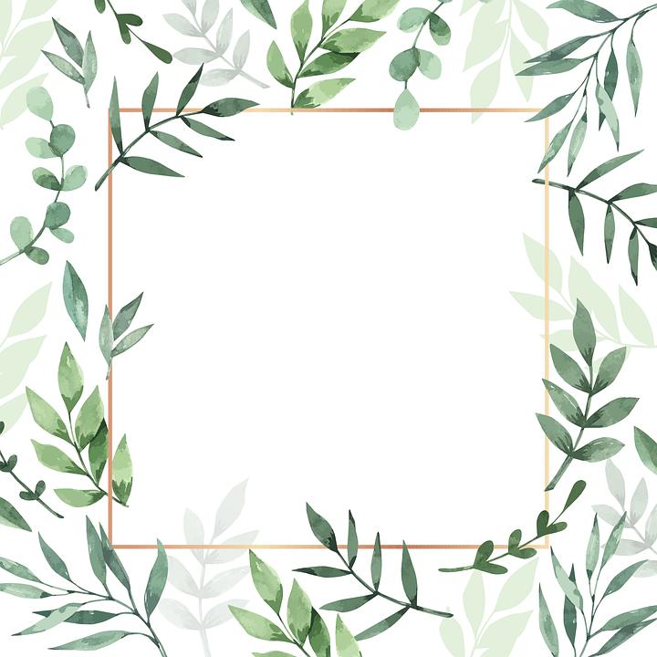 Rahmen, Blätter, Aquarell, Hintergrund, Pflanze, Natur