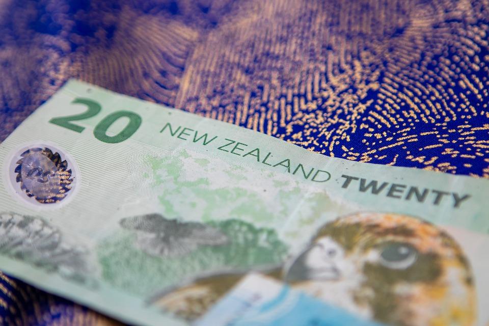 $20 Dollar Bill New Zealand's Currency