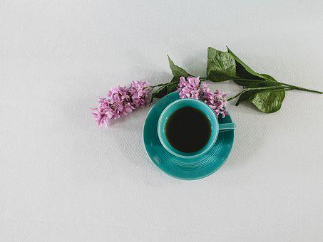 Teacup, Beverage, Tea, Drink, China