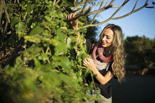 Choisir du terreau pour votre jardinerie
