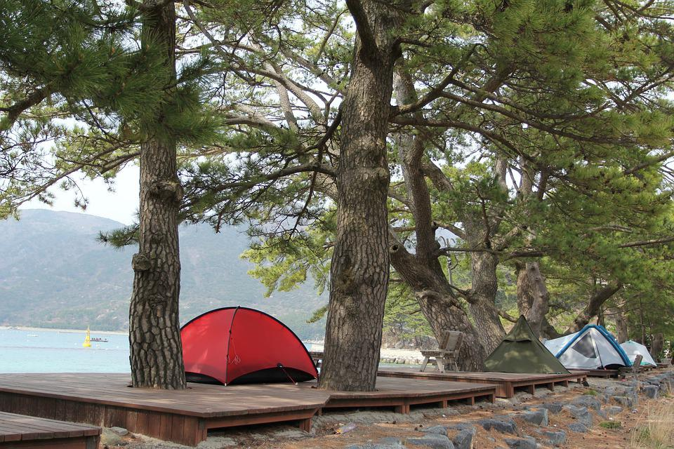 テント, キャンプ, 海, キャンプ場, 浜, 木, 風景, 自然, ビーチ, 朝, Camping