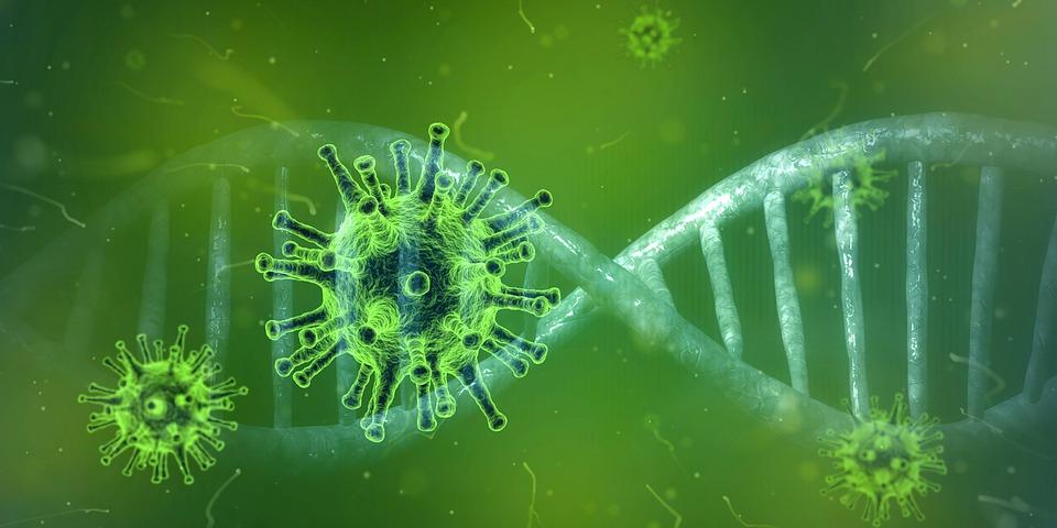 Coronavirus, Corona Virus, Covid-19, Virus, Pandemia