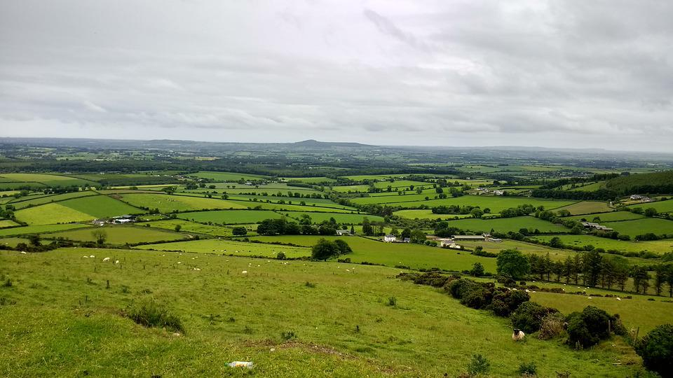 Ireland, Nature, Landscape, Travel, Grass