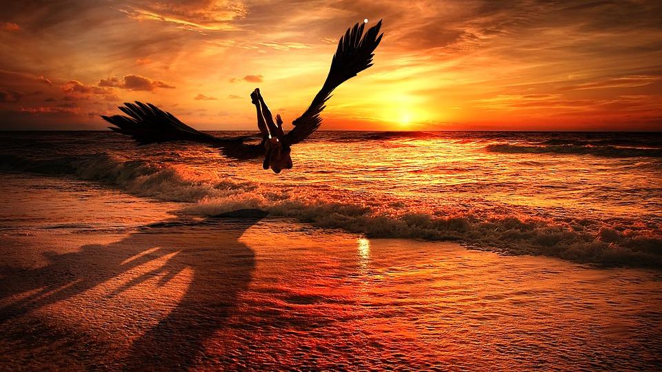 Anioł, Upadły, Wzór, Sylwetka, Zachód Słońca, Sunrise