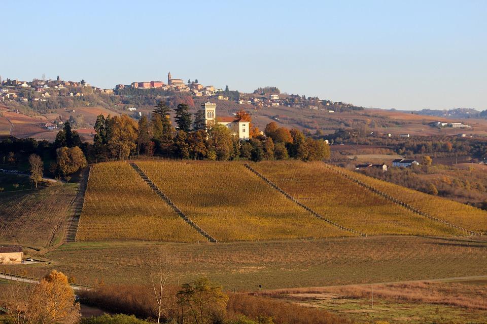 Langhe, Unesco, Barolo, Piemonte, Vino