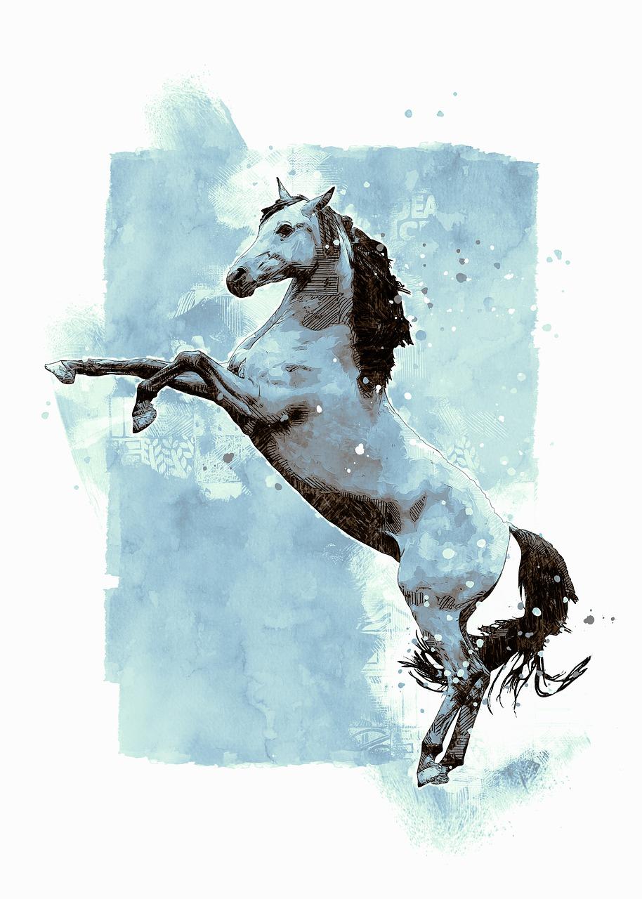Arabian Horse Stallion Free Image On Pixabay
