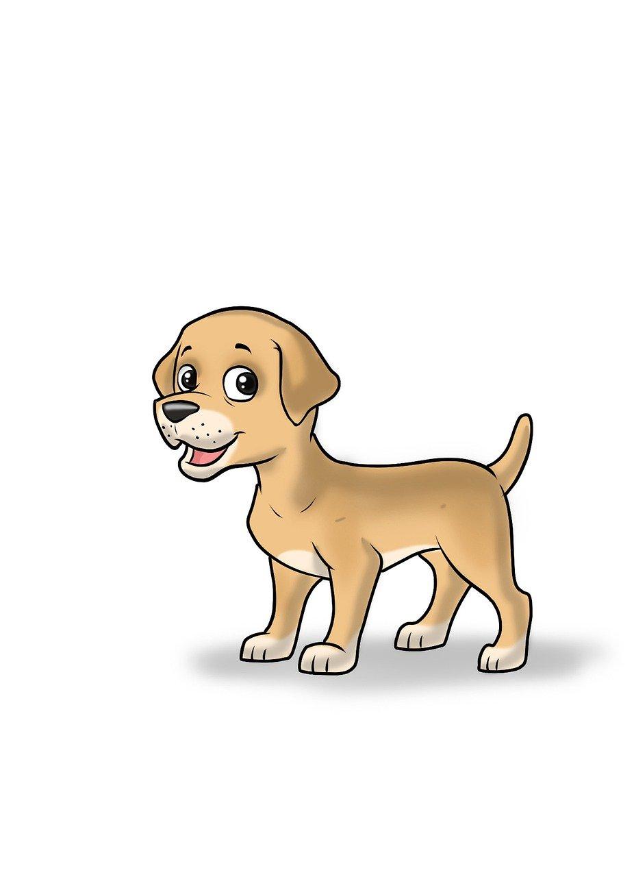 Dog Cartoon Illustration Kid Free Image On Pixabay