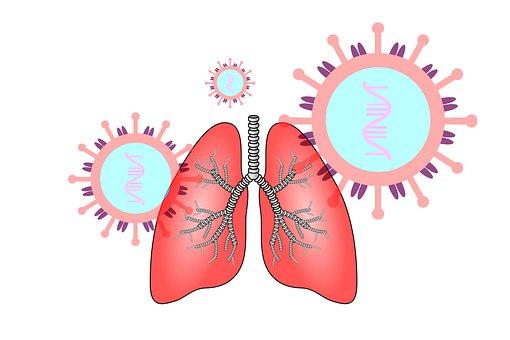 Coronavirus, Sras-Cov-2, Poumon