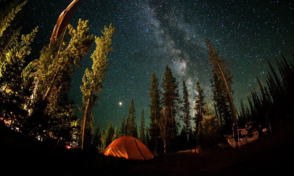 夜, スター, 満天の星空, 銀河, 夜の空, 自然, コスモス, ミルキーウェイ, 長期暴露, フォレスト