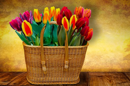 Background, Flowers, Basket, Tulips