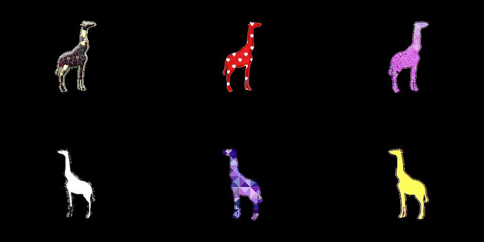 Girafa Ilustracao De Imagens Gratis No Pixabay