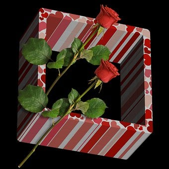 Box, Roses, Romantic, Flower, Flowers