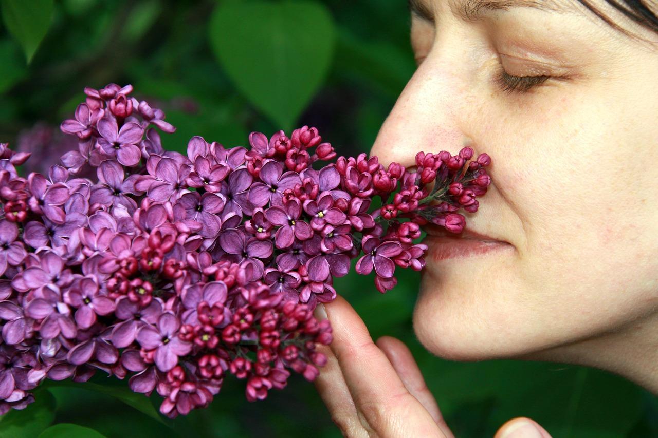 нашем каталоге картинки запахи цветов видел, как