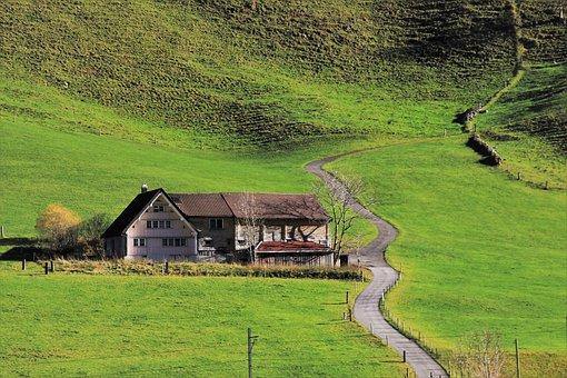 Cesta, Zelená, Stezka, Hut