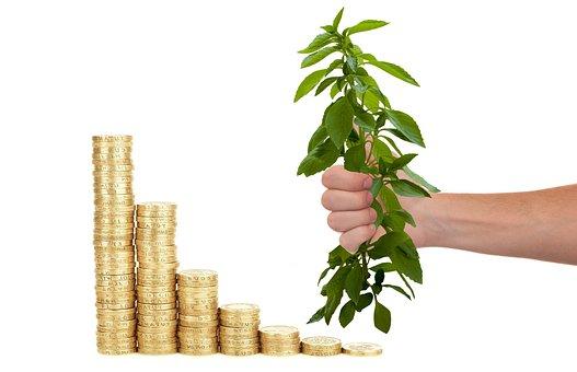 お金, コイン, 投資, ビジネス, ファイナンス, 銀行, 通貨, ローン