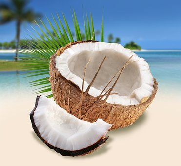 Coconuts On The Beach, Summer, Beach