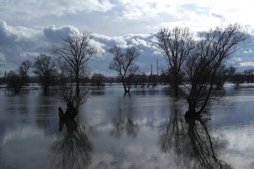 Danube, High Water, Flood, River