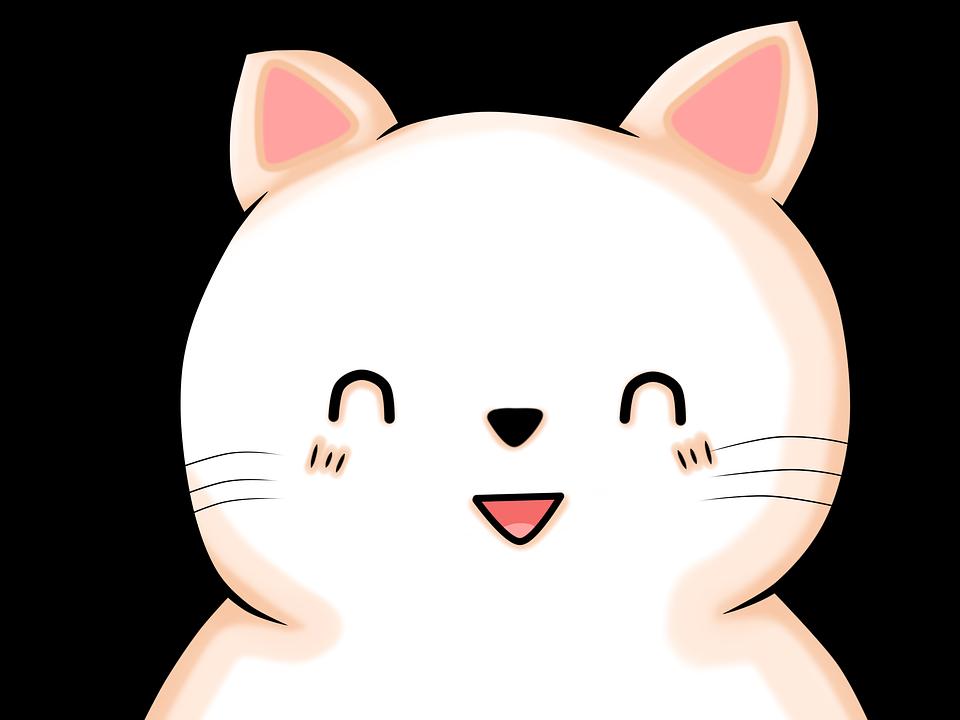 Gato Gatinho Kawaii Olhos Imagens Gratis No Pixabay