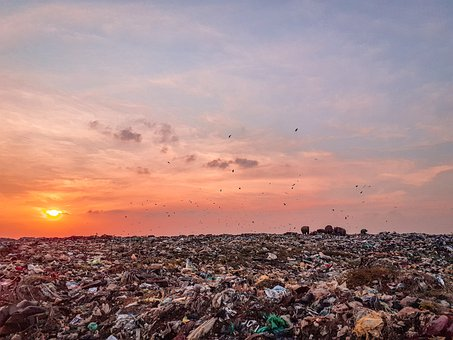Trash, Trash Land, Trash Dump, Carbauge