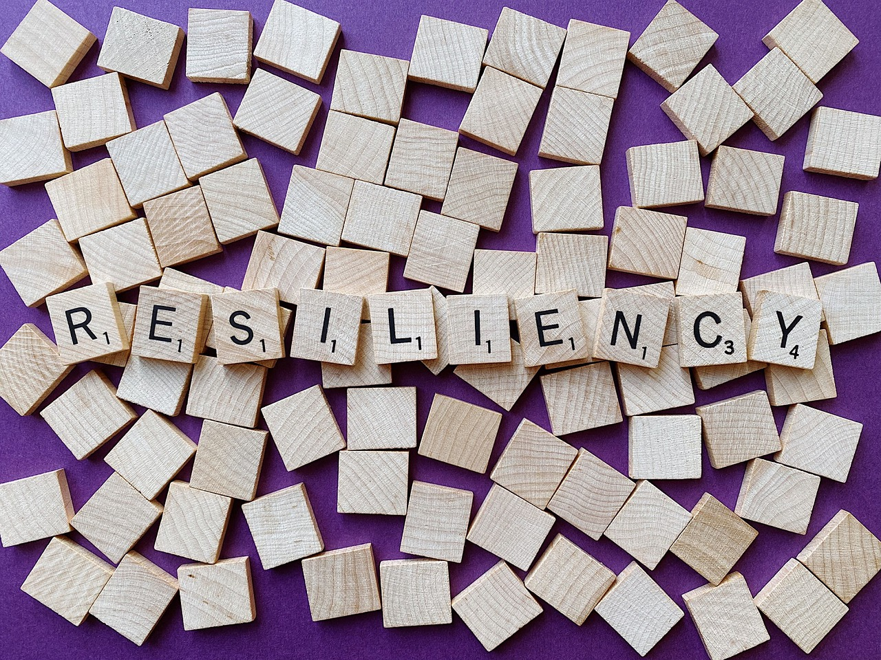 Resilient Resiliency Resilience - Free photo on Pixabay