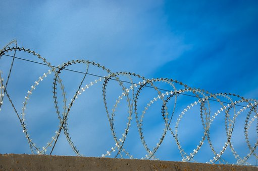 Barbed, Wire, Security, Fence, Sharp