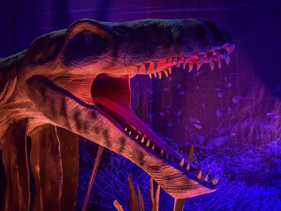 Pliosaurus, Dinosaur, Sea Monster, Reptile, Dino